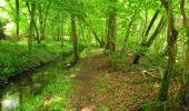 Randonnée Marche LONGPONT - en foret de Retz_33_Longpont_Vouty_Faverolles_AR - Photo 156