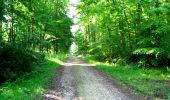 Randonnée Marche LONGPONT - en foret de Retz_33_Longpont_Vouty_Faverolles_AR - Photo 20