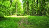 Randonnée Marche LONGPONT - en foret de Retz_33_Longpont_Vouty_Faverolles_AR - Photo 161