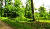 Randonnée Marche LONGPONT - en foret de Retz_33_Longpont_Vouty_Faverolles_AR - Photo 94
