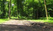 Randonnée Marche LONGPONT - en foret de Retz_33_Longpont_Vouty_Faverolles_AR - Photo 109