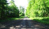 Randonnée Marche LONGPONT - en foret de Retz_33_Longpont_Vouty_Faverolles_AR - Photo 34