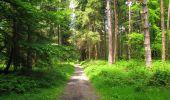 Randonnée Marche LONGPONT - en foret de Retz_33_Longpont_Vouty_Faverolles_AR - Photo 129