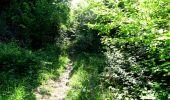 Randonnée Marche LONGPONT - en foret de Retz_33_Longpont_Vouty_Faverolles_AR - Photo 5