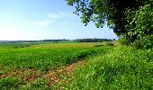 Randonnée Marche LONGPONT - en foret de Retz_33_Longpont_Vouty_Faverolles_AR - Photo 53