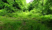 Randonnée Marche LONGPONT - en foret de Retz_33_Longpont_Vouty_Faverolles_AR - Photo 96