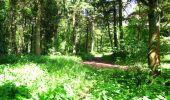 Randonnée Marche LONGPONT - en foret de Retz_33_Longpont_Vouty_Faverolles_AR - Photo 72