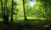 Randonnée Marche LONGPONT - en foret de Retz_33_Longpont_Vouty_Faverolles_AR - Photo 136