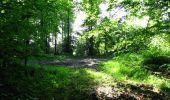 Randonnée Marche LONGPONT - en foret de Retz_33_Longpont_Vouty_Faverolles_AR - Photo 31