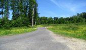 Randonnée Marche LONGPONT - en foret de Retz_33_Longpont_Vouty_Faverolles_AR - Photo 41