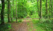 Randonnée Marche LONGPONT - en foret de Retz_33_Longpont_Vouty_Faverolles_AR - Photo 86
