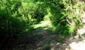 Randonnée Marche LONGPONT - en foret de Retz_33_Longpont_Vouty_Faverolles_AR - Photo 2