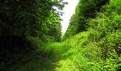 Randonnée Marche LONGPONT - en foret de Retz_33_Longpont_Vouty_Faverolles_AR - Photo 81