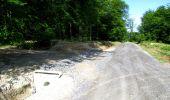Randonnée Marche LONGPONT - en foret de Retz_33_Longpont_Vouty_Faverolles_AR - Photo 45
