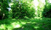 Randonnée Marche LONGPONT - en foret de Retz_33_Longpont_Vouty_Faverolles_AR - Photo 27