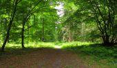 Randonnée Marche LONGPONT - en foret de Retz_33_Longpont_Vouty_Faverolles_AR - Photo 130