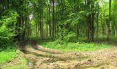 Randonnée Marche LONGPONT - en foret de Retz_33_Longpont_Vouty_Faverolles_AR - Photo 164