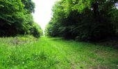 Randonnée Marche LONGPONT - en foret de Retz_33_Longpont_Vouty_Faverolles_AR - Photo 83