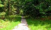 Randonnée Marche LONGPONT - en foret de Retz_33_Longpont_Vouty_Faverolles_AR - Photo 125