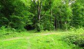 Randonnée Marche LONGPONT - en foret de Retz_33_Longpont_Vouty_Faverolles_AR - Photo 131