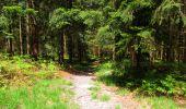 Randonnée Marche LONGPONT - en foret de Retz_33_Longpont_Vouty_Faverolles_AR - Photo 123