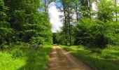 Randonnée Marche LONGPONT - en foret de Retz_33_Longpont_Vouty_Faverolles_AR - Photo 93