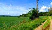 Randonnée Marche LONGPONT - en foret de Retz_33_Longpont_Vouty_Faverolles_AR - Photo 67