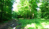 Randonnée Marche LONGPONT - en foret de Retz_33_Longpont_Vouty_Faverolles_AR - Photo 28