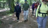 Trail Walk LE VALTIN - Vosges-150516 - SentierRoches - Photo 16