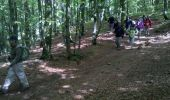 Trail Walk LE VALTIN - Vosges-150516 - SentierRoches - Photo 17