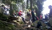 Trail Walk LE VALTIN - Vosges-150516 - SentierRoches - Photo 7