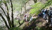 Trail Walk LE VALTIN - Vosges-150516 - SentierRoches - Photo 4