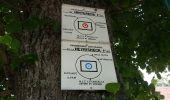 Randonnée Marche LA VANCELLE - La Vancelle - Anneau bleu - Photo 5