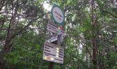 Randonnée Marche LA VANCELLE - La Vancelle - Anneau bleu - Photo 2