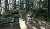 Trail Walk OTTROTT - Obernai-150625 - SteOdile-MurPaien - Photo 2