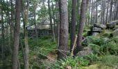 Trail Walk OTTROTT - Obernai-150625 - SteOdile-MurPaien - Photo 3