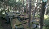 Trail Walk OTTROTT - Obernai-150625 - SteOdile-MurPaien - Photo 4
