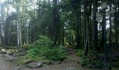 Trail Walk OTTROTT - Obernai-150625 - SteOdile-MurPaien - Photo 6