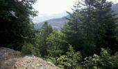 Trail Walk OTTROTT - Obernai-150625 - SteOdile-MurPaien - Photo 7