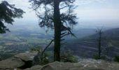Trail Walk OTTROTT - Obernai-150625 - SteOdile-MurPaien - Photo 8