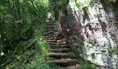 Trail Walk OTTROTT - Obernai-150625 - SteOdile-MurPaien - Photo 11