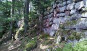 Trail Walk OTTROTT - Obernai-150625 - SteOdile-MurPaien - Photo 12