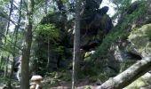 Trail Walk OTTROTT - Obernai-150625 - SteOdile-MurPaien - Photo 13