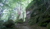 Trail Walk OTTROTT - Obernai-150625 - SteOdile-MurPaien - Photo 16