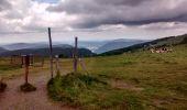 Randonnée Marche LA BRESSE - Printemps au Hohneck et au Kastelberg  - Photo 1