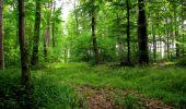Randonnée Marche LONGPONT - en forêt de Retz_36_Longpont_Mareuil sur Ourcq_A - Photo 59