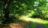 Randonnée Marche LONGPONT - en forêt de Retz_36_Longpont_Mareuil sur Ourcq_A - Photo 12