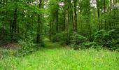 Randonnée Marche LONGPONT - en forêt de Retz_36_Longpont_Mareuil sur Ourcq_A - Photo 30