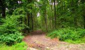 Randonnée Marche LONGPONT - en forêt de Retz_36_Longpont_Mareuil sur Ourcq_A - Photo 28
