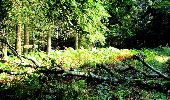 Randonnée Marche LONGPONT - en forêt de Retz_36_Longpont_Mareuil sur Ourcq_A - Photo 17